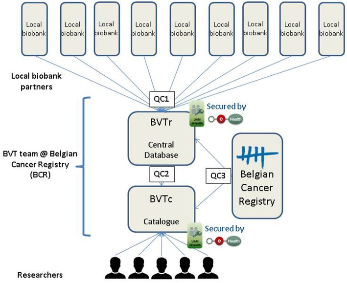The Belgian Virtual Tumorbank: A Tool for Translational Cancer Research.